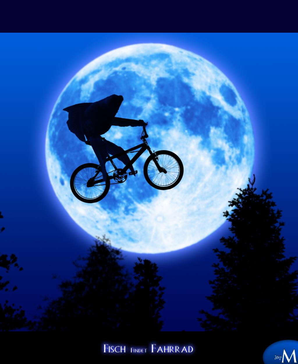 Fisch findet Fahrrad