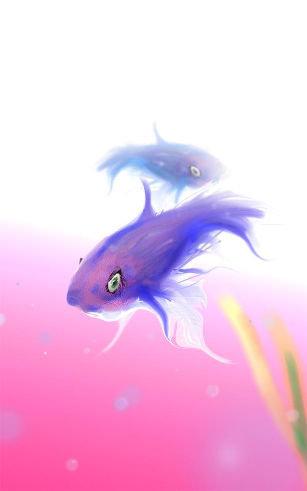Fisch im Viereck 2