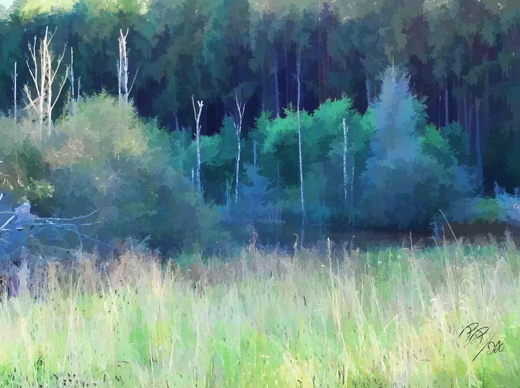 Stedtlinger Moor 2
