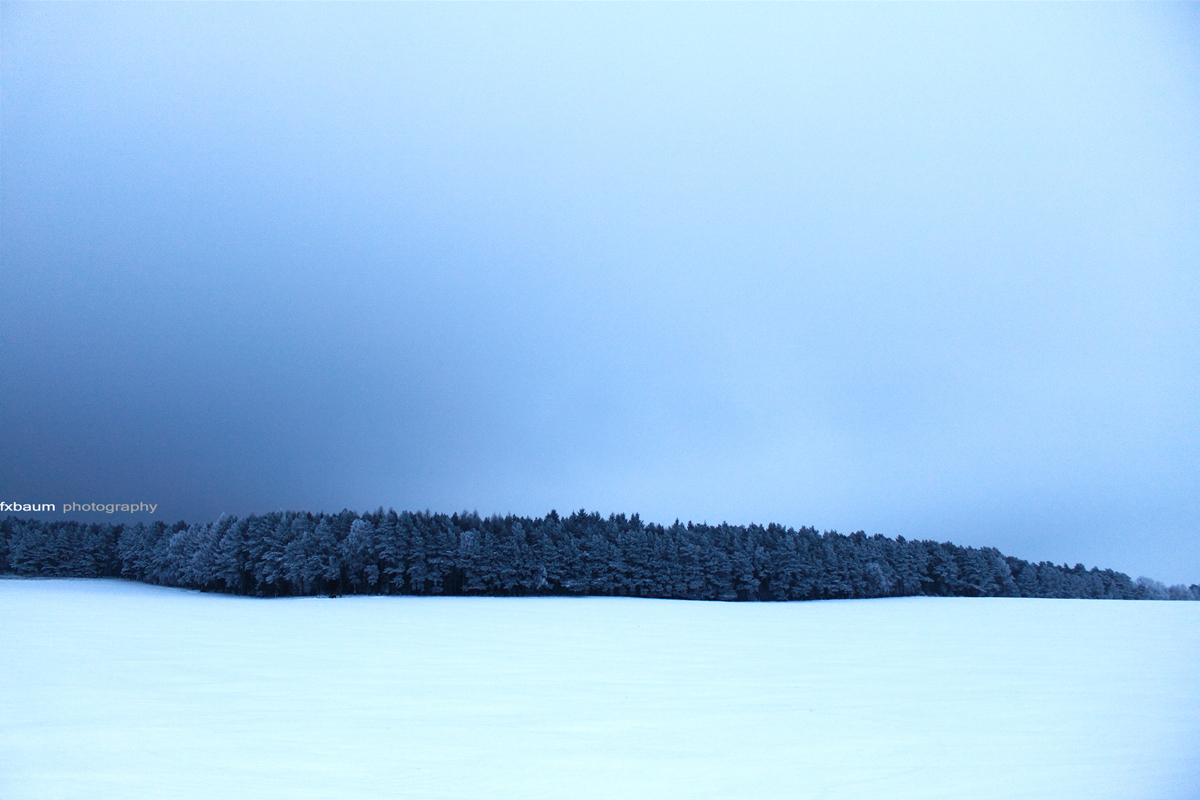 cold island 2