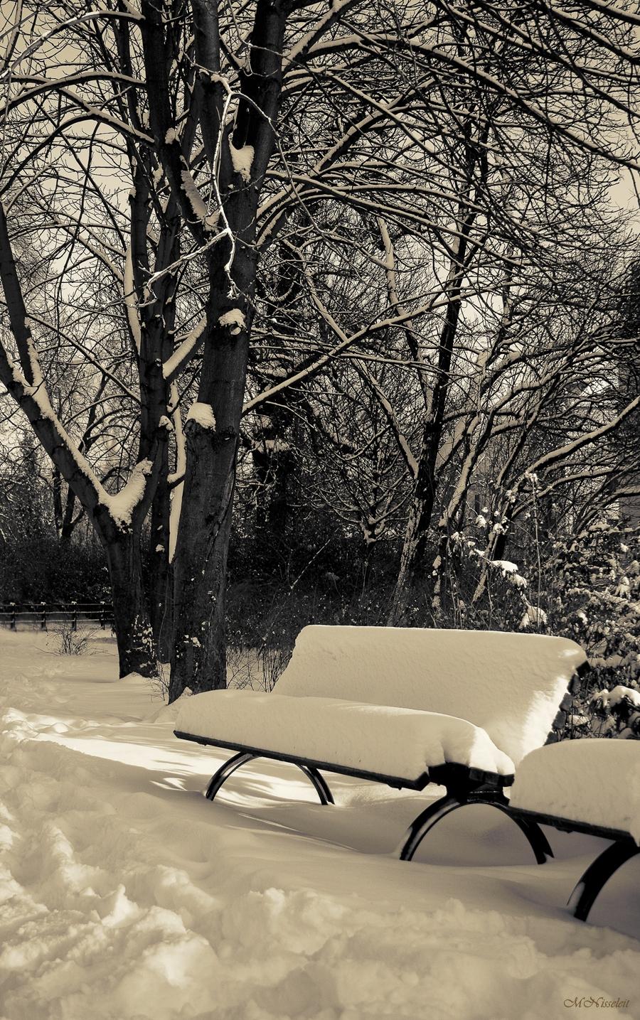 Winter ohne Rast und Ruh