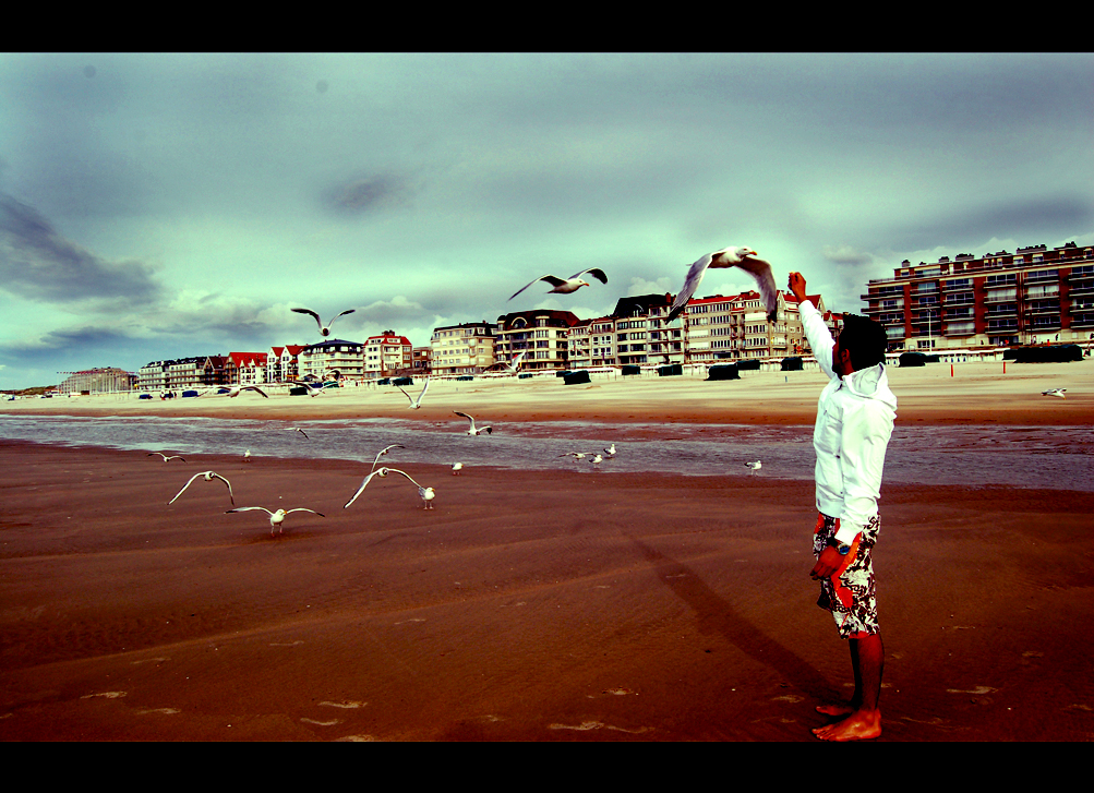Belgien | Strand