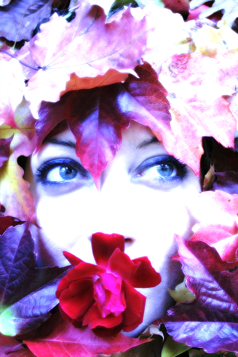 Herbst = Striptease der Flora