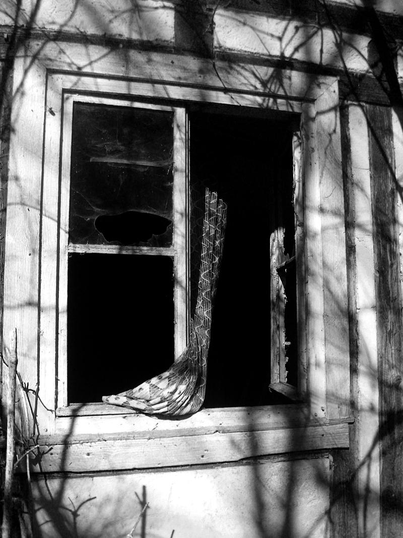 Fenster des Todes ;)